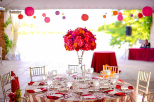 Indian-Wedding.-Botanic-Gardens.-Fragola-Productions.-Sweetchic-Events.-Exquisite-Designs.-Hot-Pink-Hydragea-Red-Rose-Purple-Orchids-Centerpiece.