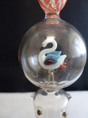 ビミニグラス 白鳥