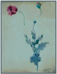 シャルル・シュナイダーの水彩画 ナンシー美術学校 1900年 シュナイダー兄弟