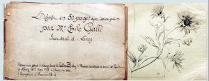 エミール・ガレが1898年3月に労働委員評議会に提出した作品の冊子見本